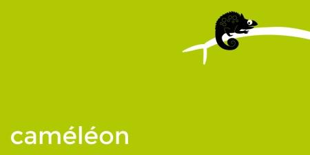 NeBougePas-07-camaleon
